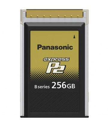 P2 CARD 256GB