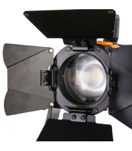 FALCON EYE PULSAR 5 LED SPOT (BICOLOR)